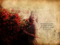 drew-barrymore - DrewBarrymore! wallpaper
