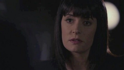 Criminal Minds wallpaper with a portrait called Emily Prentiss