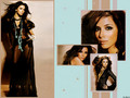 EvaLongoria! - eva-longoria wallpaper