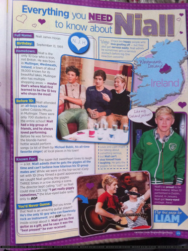 Everything You Need To Know About Niall :) x