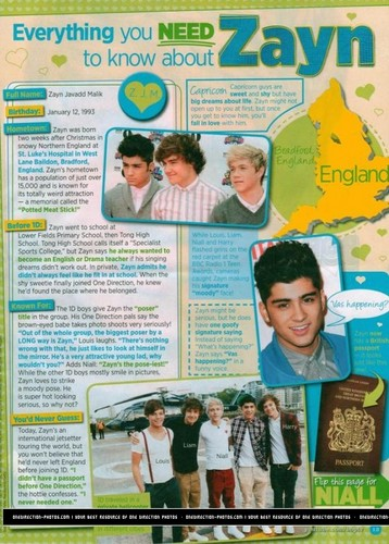 Everything u Need To Know About Zayn :) x