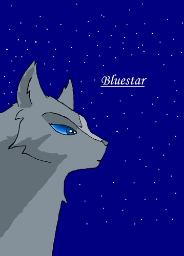 Make Your Own Warrior Cat! hình nền called người hâm mộ Art : Bluestar