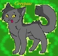 Greypaw/stripe  - warriors-novel-series fan art
