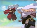 In Battle! - sesshomaru-and-inuyasha photo