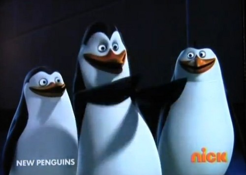 Penguins of Madagascar wallpaper entitled It's my birthday! Oh yeah!