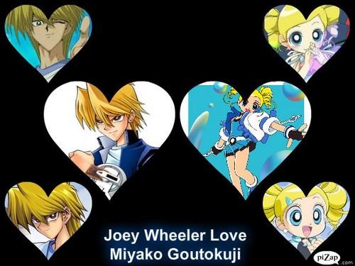 Joey Wheeler tình yêu Miyako Goutokuji