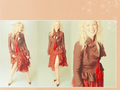 KatherineHeigl! - katherine-heigl wallpaper
