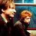 Lupin & Ron