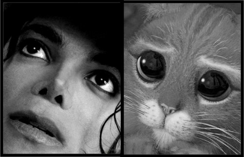 Michael and Puss In Boots... cutest lookalikes ever!!!
