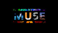 Muse &lt;3 - muse photo