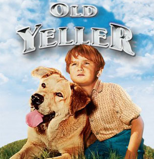 Old Yeller pics