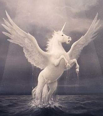Pegasus!