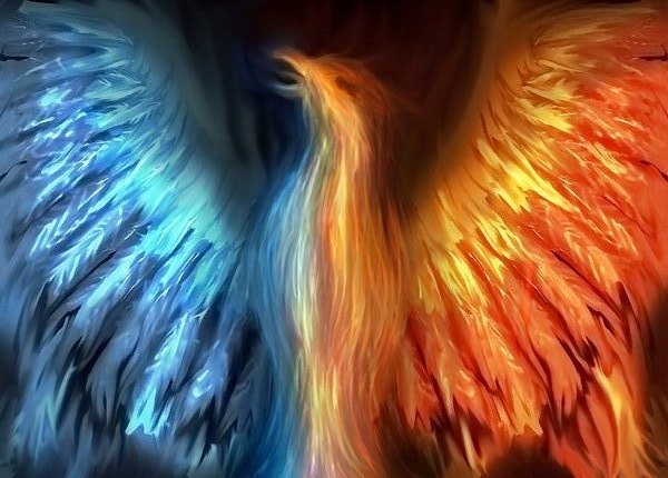 Mythology Images Phoenix Wallpaper And Background Photos