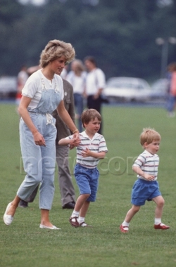 Princess Diana and the Princes
