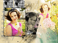 RachelMcAdams! - rachel-mcadams wallpaper