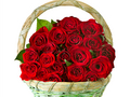 Roses for Berni - yorkshire_rose wallpaper