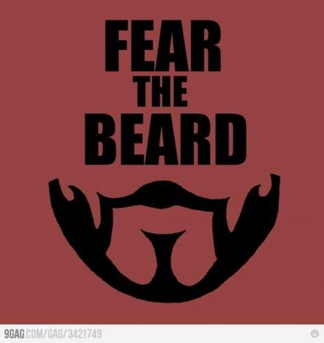 Seneca Crane: FEAR THE BEARD - the-hunger-games Fan Art