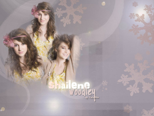Shailene Woodley wallpaper probably with a portrait called ShaileneWoodley!