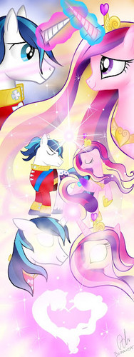Shining Armor and Cadance