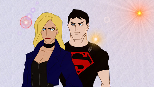 Young Justice images Superboy Black Canary HD wallpaper ...