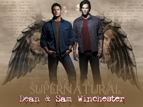 Supernatural wallpaper probably with a sign, a horse wrangler, and a horse trail called Supernatural Wallpaper