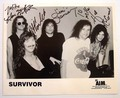 Survivor (band) - survivor-band photo