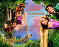 TANGLED wallpaper - princess-rapunzel-from-tangled wallpaper
