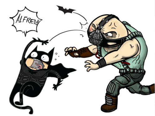 The Dark Kight Rises For Fun - the-dark-knight-rises Fan Art