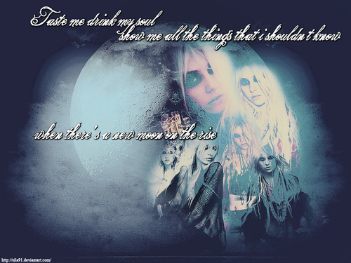 The Pretty Reckless wallpaper probably containing Anime titled ThePrettyReckless!