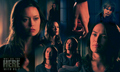 TheSarahConnorChronicles! - the-sarah-connor-chronicles photo