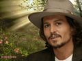 This must be Paradise - johnny-depp wallpaper