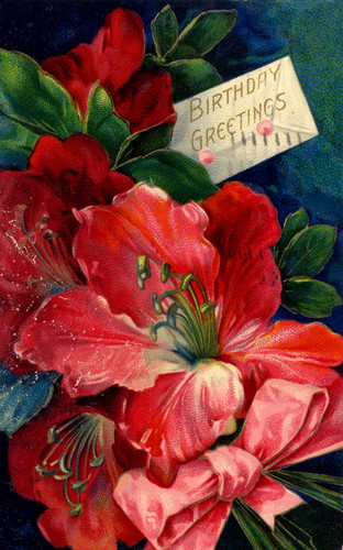 Vintage Birthday Card for Rosebud