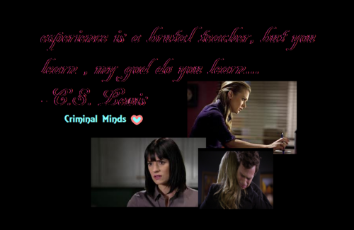 Criminal Minds Girls wallpaper called experience collage jj and emily <3