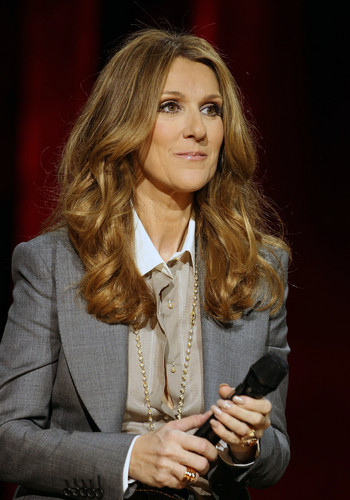 Celine Dion achtergrond with a business suit, a well dressed person, and a suit titled press conference after her toon at the Colosseum
