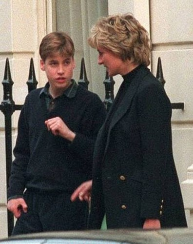 young william harry