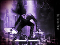 rakshasas-world-of-rock-n-roll - ☆ CC ☆  wallpaper