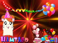 :))O - hamtaro photo