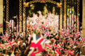 2011 Royal Wedding fans
