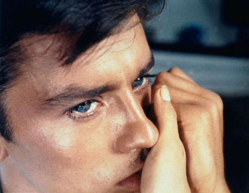 Alain Delon wallpaper possibly with a portrait titled Alain Delon