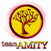 Amity - insurgent icon