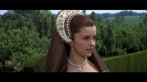 Anne Boleyn 壁紙 entitled Anne of the thousand days