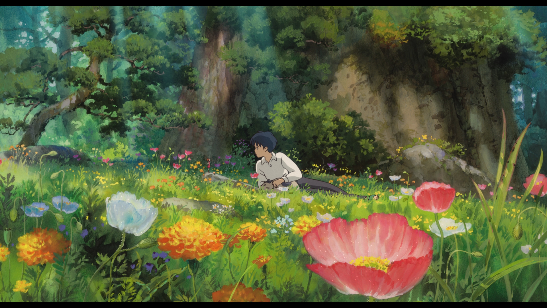 The Secret World Of Arrietty Images Arrietty Hd Wallpaper And