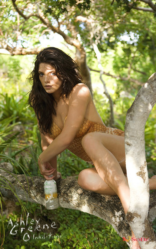 Ashley Greene: SoBe Skinsuit 2010 (Orange)