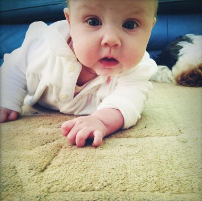 Baby Lux wallpaper containing a neonate called Baby Lux <3