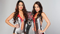 Bella Twins - wwe-divas-championship photo