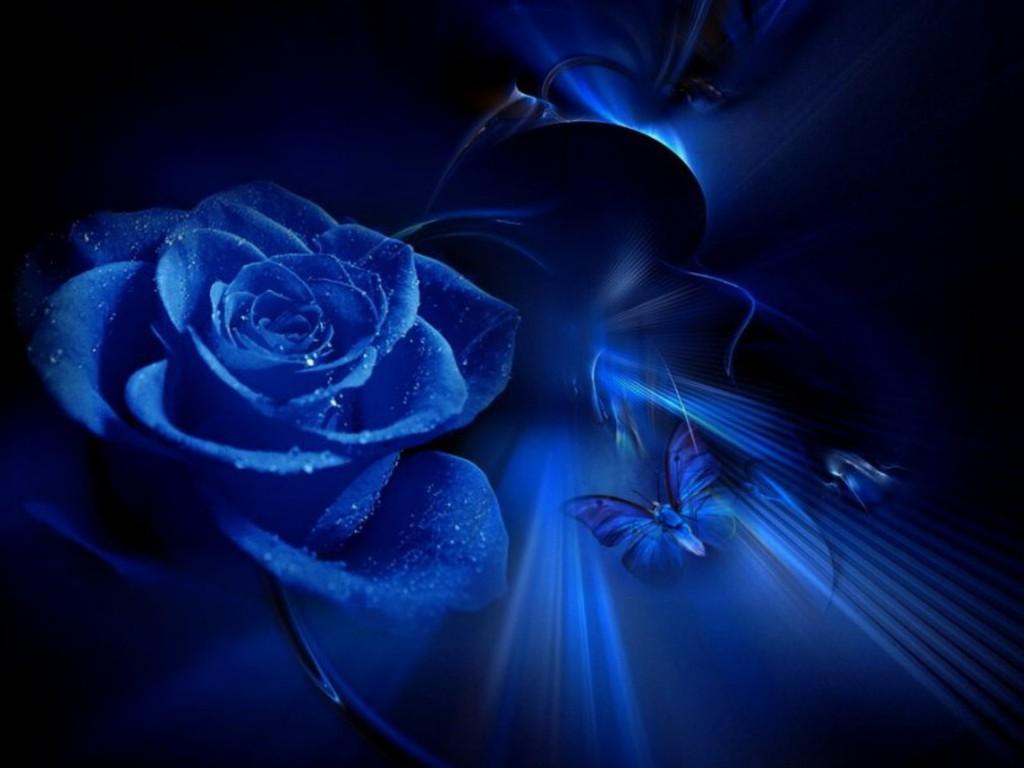 Blue Beauty fondo de pantalla