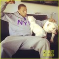 Chris Brown: New Puppy! - chris-brown photo