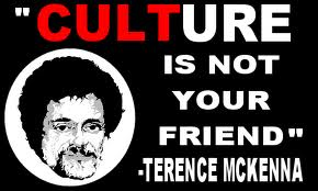 Culture Is Not Your Friend
