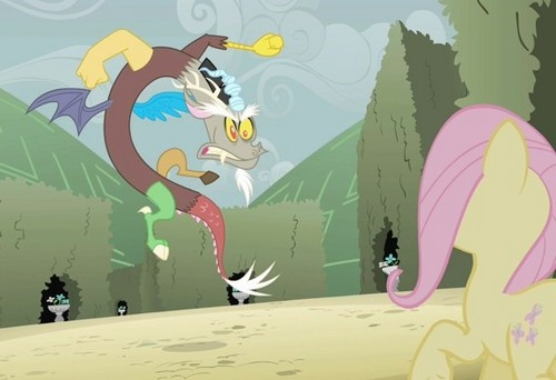 What do you think will happen in Season 3?  DISCORD-discord-my-little-pony-friendship-is-magic-30658591-500-342
