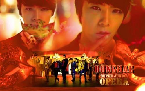 Donghae Opera 壁紙 Spam